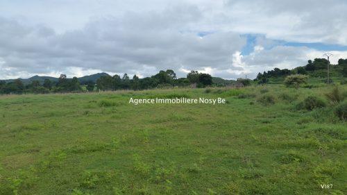 Land for sale Orangea Ampasy Nosybe