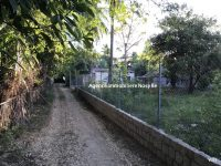 sale-land-1531-or-16479-beach-ankibanivato-50-m