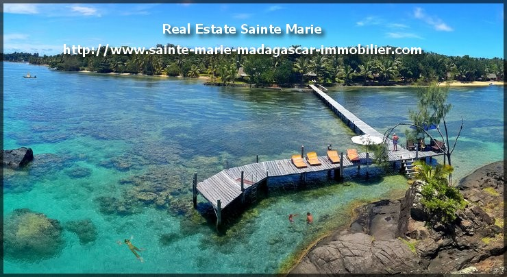 Skull Island Infos